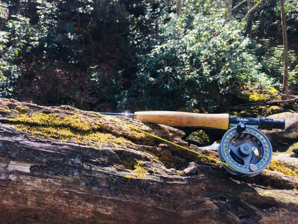 one of the best fly rods lying on tree