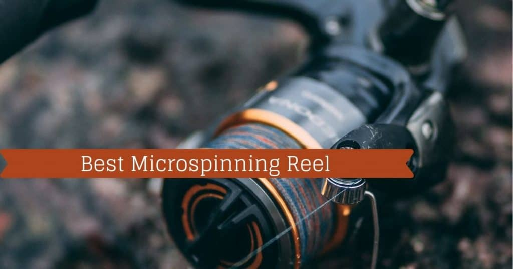 Best Microspinning Reel - Fishstainable