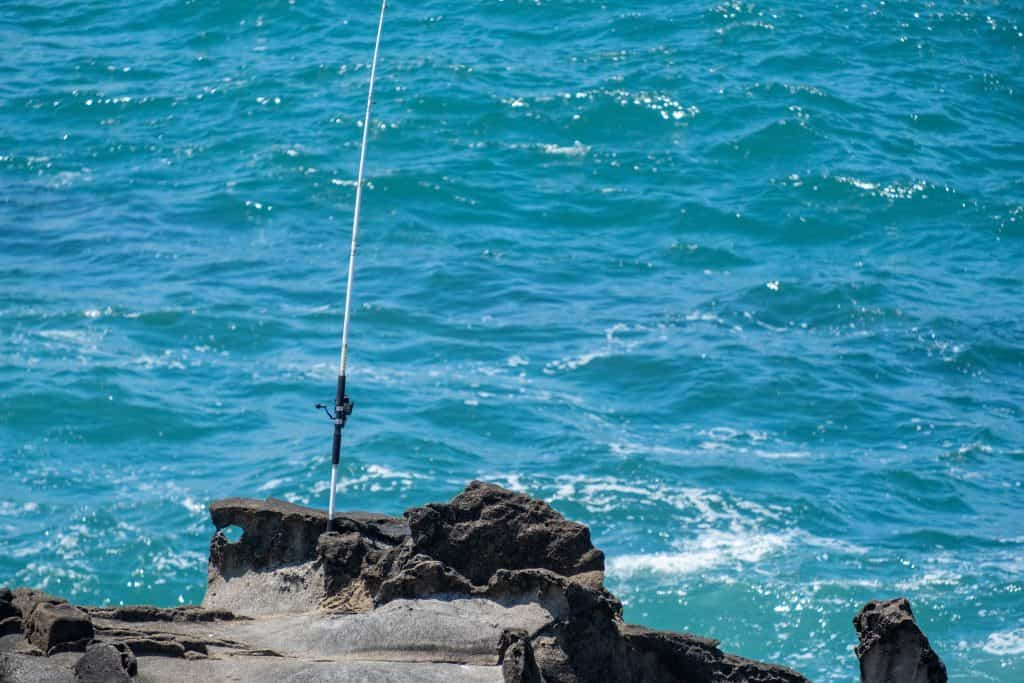 One of the best surf casting rods on a cliff in front of the ocean