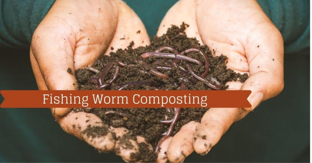 Fishing Worm Composting - Fishstainable