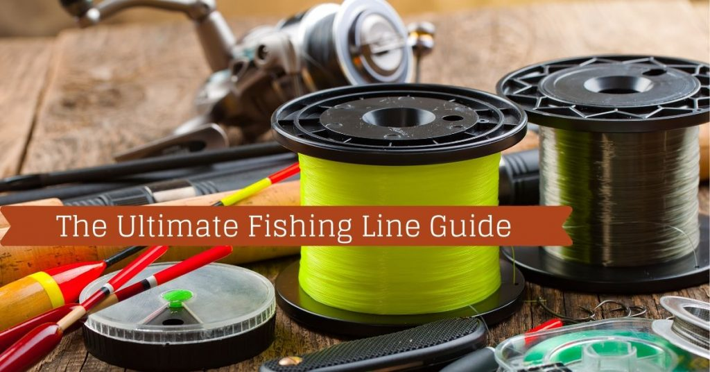 The Ultimate Fishing Line Guide - Fishstainable