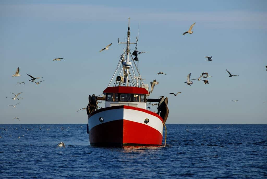 Approaching and thinking about how should you pass a fishing boat