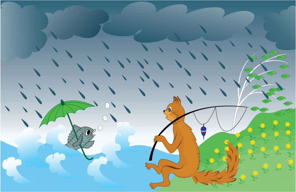 A cat fishing in the rain wondering about the fish who has an umbrella. is fishing in the rain good?
