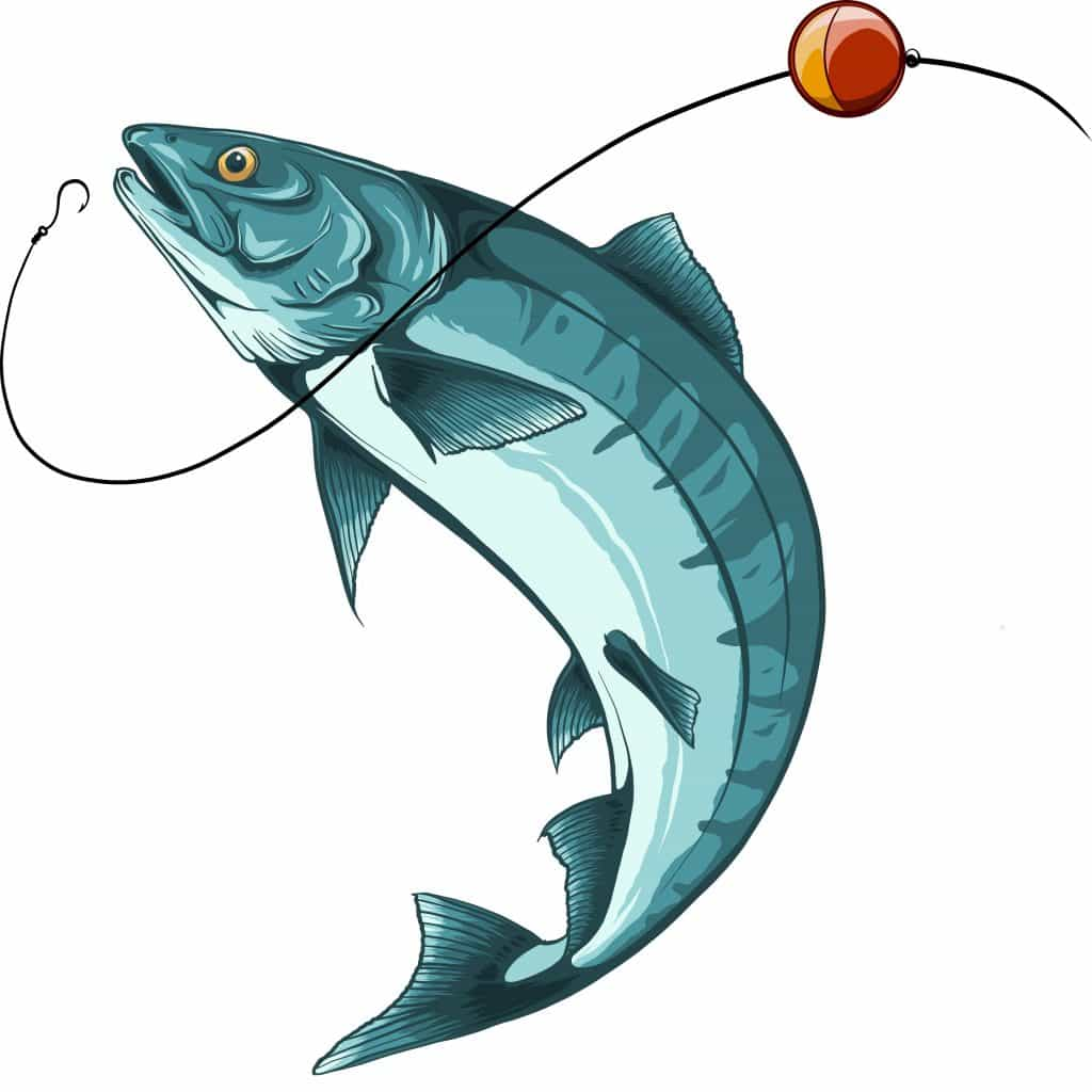 Vector for best fishing line for walleye