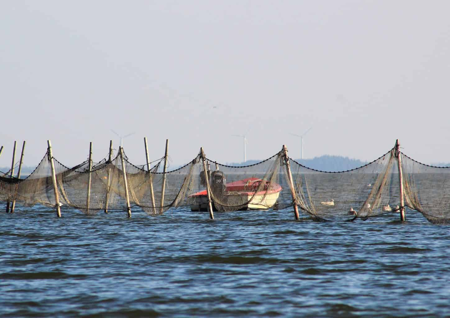 What is bycatch? - Small boat near offshore fishing net and traps